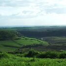 Yorkshire Moors heading up to Whitby by BronReid