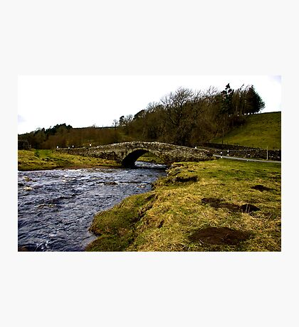 River Clover Bridge Photographic Print