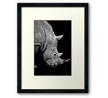 Rhinoceros on black background Framed Print