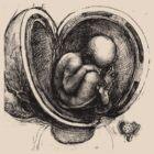 Leonardo's Baby by VenusOak
