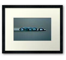 Seven Windows and a Cat Framed Print
