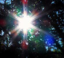 Heavenly Sunshine by Nicole DeFord