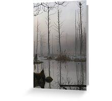 Daybreak - Blue Heron Rookery - Bridgton, Maine Greeting Card