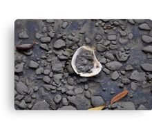 pluff mud and oyster  Canvas Print