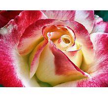 Exquisite Photographic Print