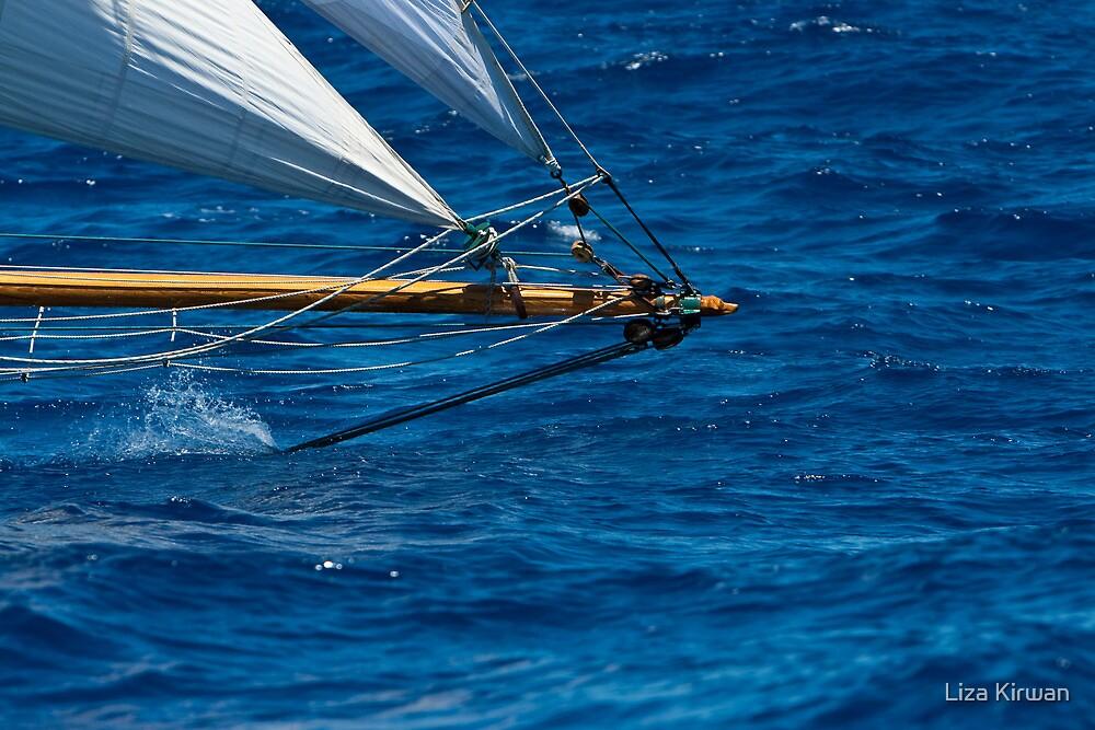 Deep, Blue Sea by Liza Kirwan
