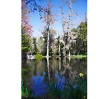 Magnolia Lake Photographic Print