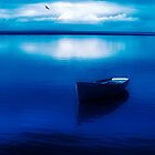 Blue Blue Boat by Mal Bray