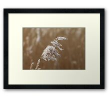 The power of simplicity 2 Framed Print