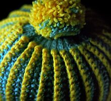 Flowers in the Window - Tea Cosy I by Roy Salter
