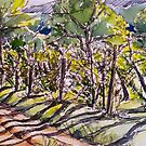 Vineyard, early morning. La Vigna Italy pen and wash 2010Ⓒ by Elizabeth Moore Golding
