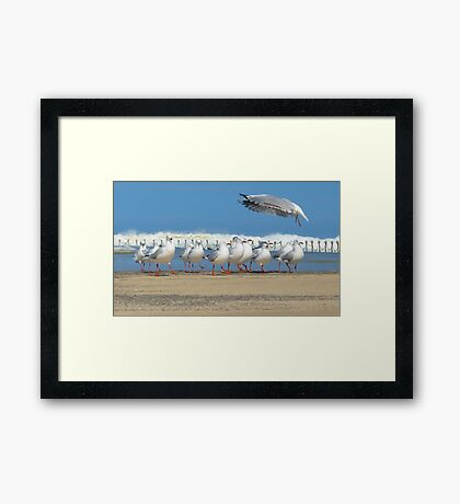 Conducting the Line Dance Framed Print