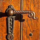 Door handle by aleksandra15