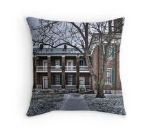 Plantation House - back Throw Pillow