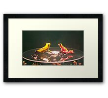 we're just a toad in disguise... Framed Print