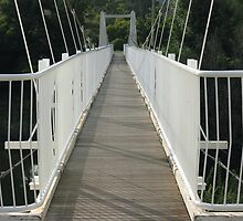 The Footbridge by Michael John