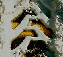 Yellow Runs Through It by peterrobinsonjr
