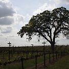 Oak & Vine by CherylBee