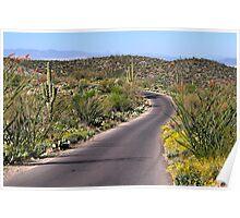 Colorful Desert Loop  Poster