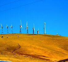 Wind Farms by Elizabeth Hoskinson