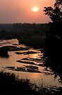 Sunrise Over Sabi River by Michael  Moss