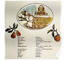 Language of Flowers Kate Greenaway 1884 0035 Descriptions of Specific Flower Significations Poster