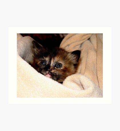 Kitty Wrap Art Print