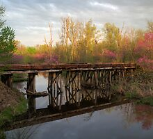 Springtime in Oklahoma II by Mitchell Tillison