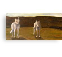 Two White Wolves Canvas Print