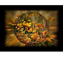 Bubble of Spring Photographic Print