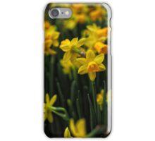 Jolly Jonquils iPhone Case/Skin