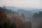 Layered Hills in Early Morning Mist, Algonquin Park, ON by Gerda Grice