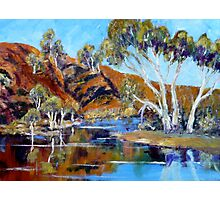 The Flinders Ranges After The Rains - Oil Painting Photographic Print