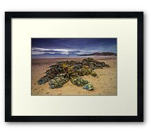 A Breath Of Sea Air Framed Print