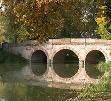 Bridge in Park Schonbusch, Aschaffenburg Germany by Adrienne Bartl