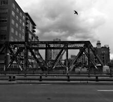 Black and White Bridge in Denver by Jackson Killion