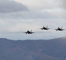 RAAF FA18 Hornets by bigpetesol