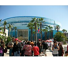 Welcome Race Fan...Toyota Gran Prix of Long Beach '10  Photographic Print