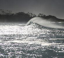 swell. redbill beach, bicheno, tasmania by tim buckley | bodhiimages