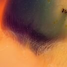 Rainbow Nebula by ionclad