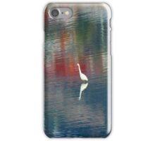 Egret In The Derwent River iPhone Case/Skin