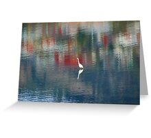 Egret In The Derwent River Greeting Card