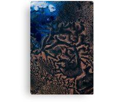 Polar Reticulated Copper Canvas Print