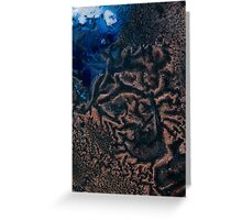 Polar Reticulated Copper Greeting Card