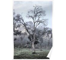 Farmyard Fog Poster