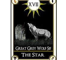 Dark Souls The Star Tarot Card by DemonCalcifer