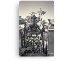 Heaven's Gate Canvas Print