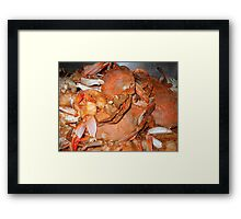 """Hot Crabs"" Framed Print"