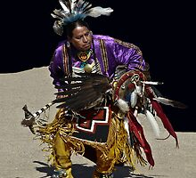 Northern Traditional Dancer by Linda Sparks