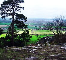 Haughmond Hill by michaelajf